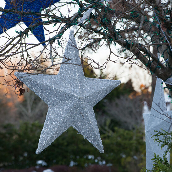 White LED Hanging Star Light, Metallic Mesh Covered Frame