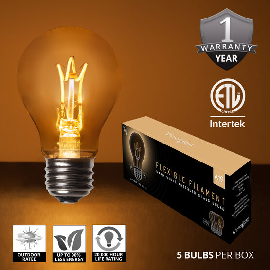 Cafe String Light Set, Warm White A19 FlexFilament TM Antiqued Glass LED Edison Bulbs, Black Wire, Copper Shades