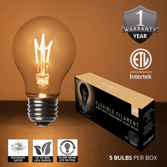 Cafe String Light Set, Warm White A19 FlexFilament TM Glass LED Edison Bulbs, Black Wire, Copper Shades