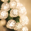 Raspberry LED String Lights, Warm White, Green Wire
