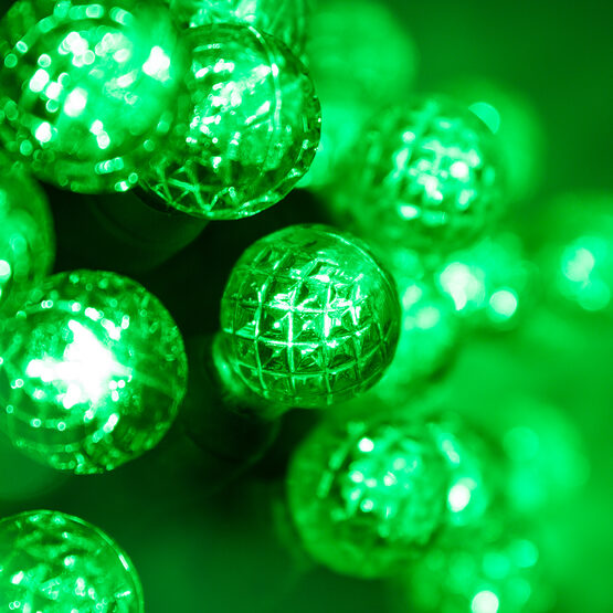 Raspberry LED String Lights, Green, Green Wire