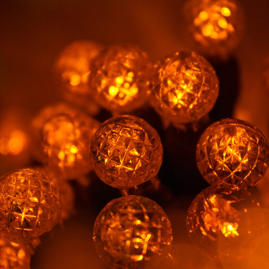 Raspberry LED String Lights, Amber, Green Wire