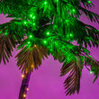 Curved LED Lighted Palm Tree with Green Canopy