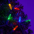 LED Mini String Lights, Multicolor, Green Wire