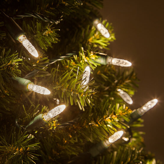 LED Mini String Lights, Warm White, Green Wire