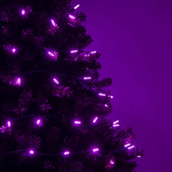 LED Mini String Lights, Purple, Green Wire