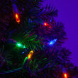 T5 Mini Christmas String Lights, Multicolor, Green Wire