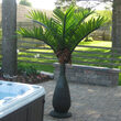 7.5' Bottle Commercial LED Lighted Palm Tree with Green Canopy