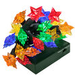 LED Battery Operated Lights, Multicolor Star Bulbs, Green Wire