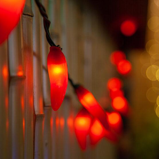 Chili Pepper Light Set, 35 Red Lights
