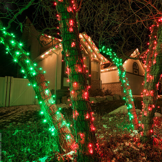 Wide Angle LED Mini Lights, Red, Green Wire