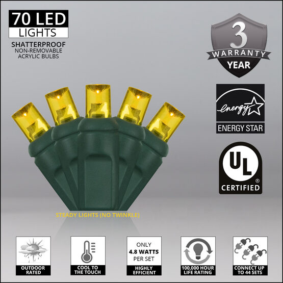 Wide Angle LED Mini Lights, Gold, Green Wire