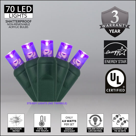 Wide Angle LED Mini Lights, Purple, Green Wire