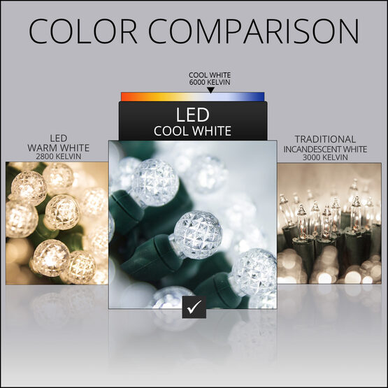 Raspberry LED String Lights, Cool White, Green Wire