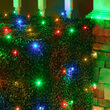 4' x 6' 5mm LED Net Lights, Multicolor, Green Wire