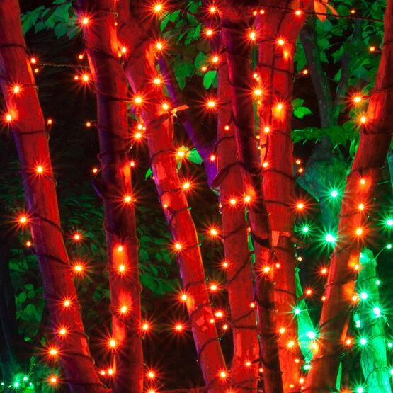 Orange Halloween String Lights, 50 ct, LED Mini