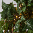 Brown Falling Willow LED Lighted Branches, Warm White Lights, 1 pc