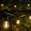 Commercial Patio String Lights, Warm White S14 FlexFilament TM LED Glass Bulbs, Black Wire