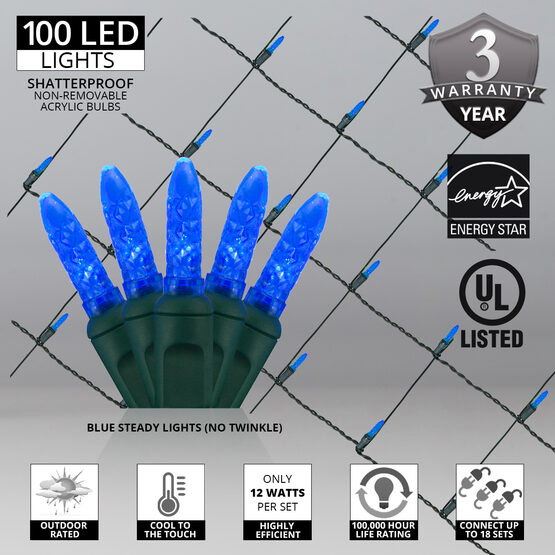 4' x 6' M5 LED Net Lights, Blue, Green Wire