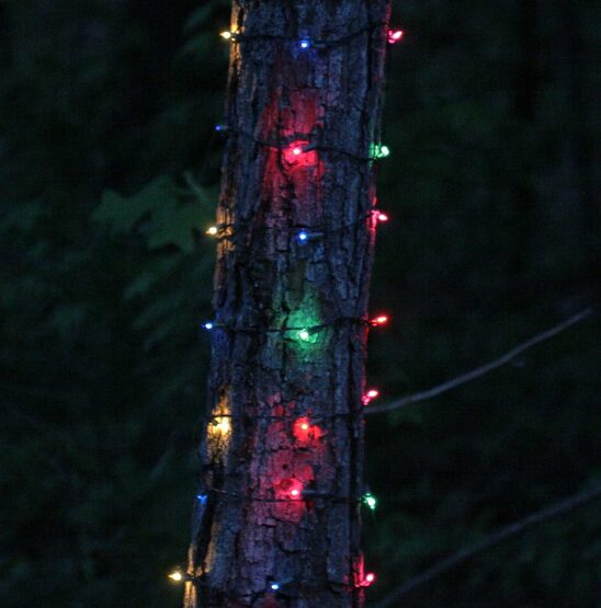 """Trunk Wrap Lights, 6"""" x 12', Multicolor, Brown Wire"""