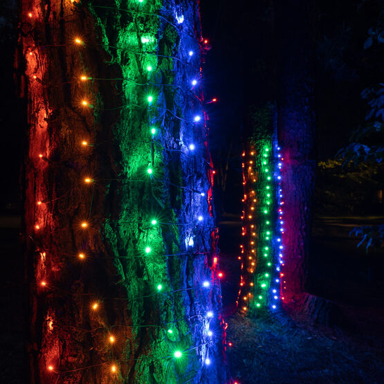 LED Trunk Wrap Lights, 2' x 6', Multicolor, Green Wire