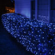4' x 6' 5mm LED Net Lights, Blue, Green Wire