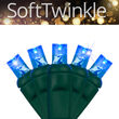 SoftTwinkle TM Wide Angle LED Mini Lights, Blue, Green Wire