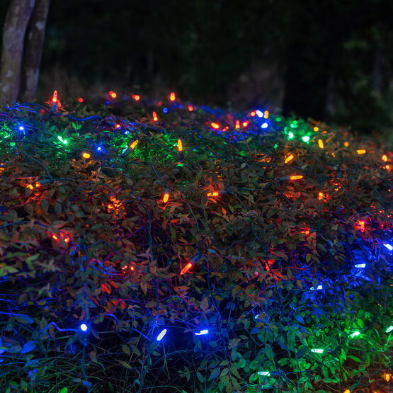 4' x 6' M5 LED Net Lights, Multicolor, Green Wire