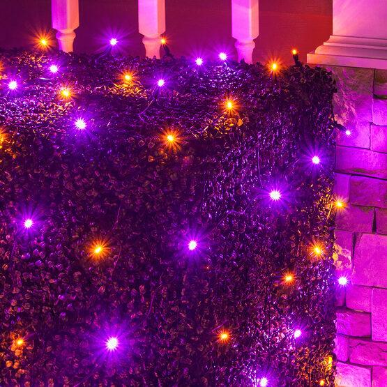 4' x 6' 5mm Halloween LED Net Lights, Purple, Orange, Black Wire