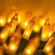Standard Gold Frost Mini String Lights