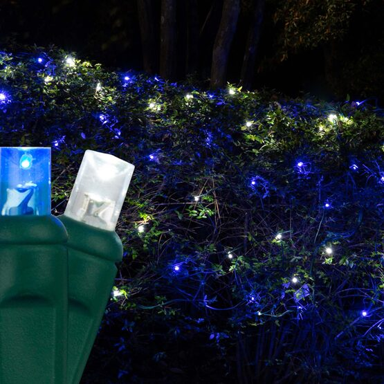 4' x 6' 5mm LED Net Lights, Blue, Cool White, Green Wire