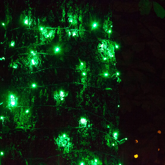 SoftTwinkle Wide Angle LED Mini Lights, Green, Green Wire