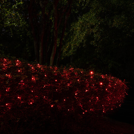 4' x 6' 5mm SoftTwinkle LED Net Lights, Red, Green Wire