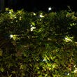 4' x 6' 5mm SoftTwinkle LED Net Lights, Warm White, Green Wire