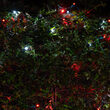 4' x 6' 5mm SoftTwinkle LED Net Lights, Red, Cool White, Green Wire