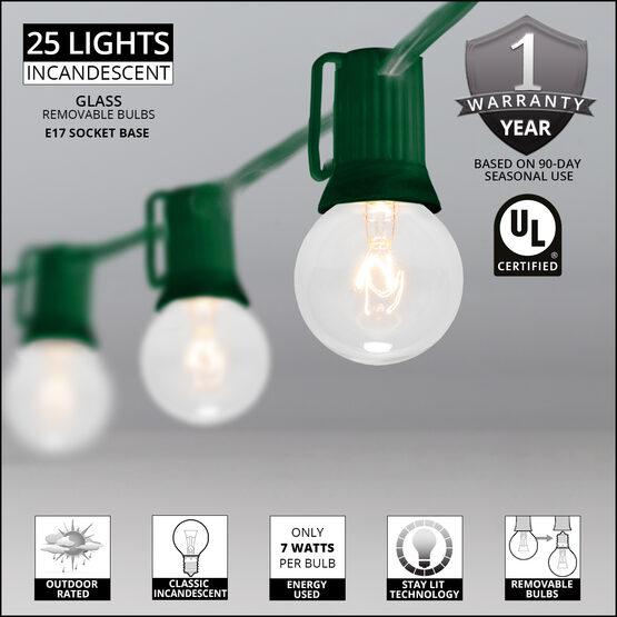 25' Globe String Lights, 25 Clear G40 Bulbs