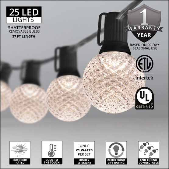 37' Globe String Light Set, 25 Warm White G50 OptiCore LED Bulbs, Black Wire