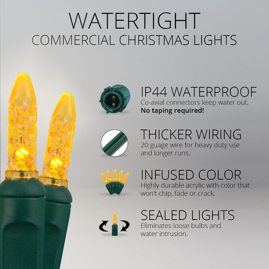 M5 Commercial LED String Lights, Gold, Green Wire