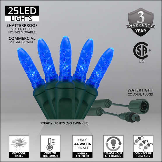 M5 Commercial LED String Lights, Blue, Green Wire
