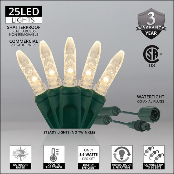 M5 Commercial LED String Lights, Warm White, Green Wire