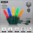 M5 Commercial LED String Lights, Multicolor, Green Wire