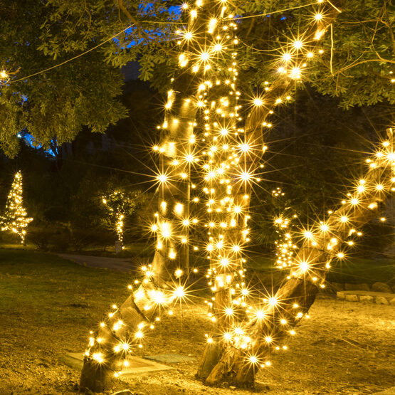 5mm Commercial LED String Lights, Warm White, Green Wire
