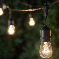 cat-icon-outdoor-patio-string-lights.jpg
