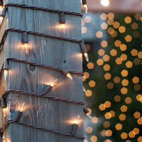 cat-icon-outdoor-string-lights.jpg
