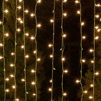 cat-icon-incandescent-mini-string-lights.jpg