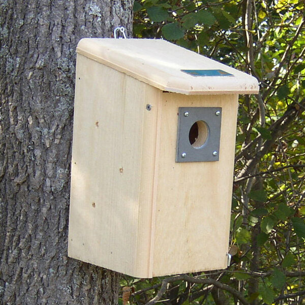 Bird house designs yard envy for Easy birdhouse ideas