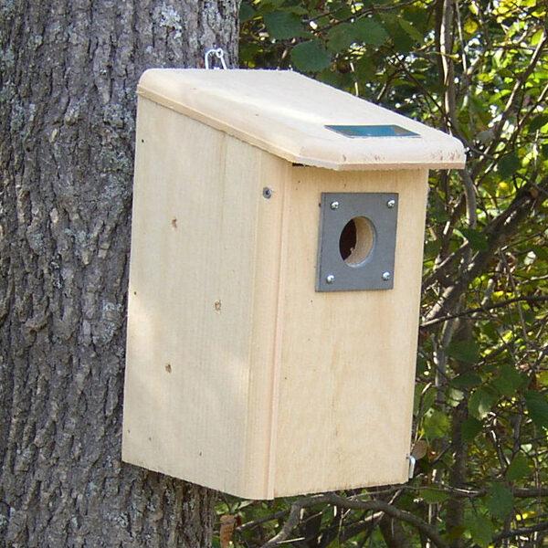 Delightful Birdhouse Designs Part - 4: Wooden Bird Houses