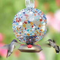 Multicolor Hummingbird Feeder