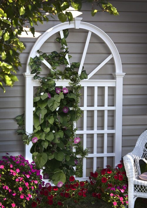 Climbing flowers grow to new heights with the support of a decorative garden trellis!