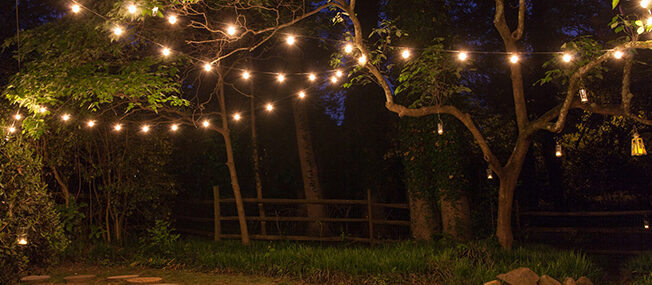 How to hang patio lights yard envy for How to hang string lights on trees